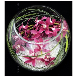 Cymbidium Orchid Fish Bowl Design