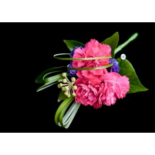 Spray Carnation Corsage
