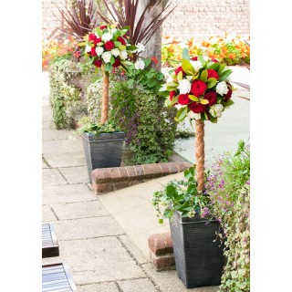 Topiary Tree Bases available to hire